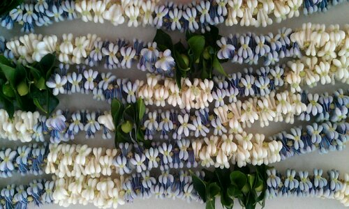 sweet blossoms hawaii double crown flower lei